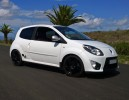 RS MONITOR TWINGO GT TCE